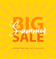big summer sale sign with retro pop art halftone vector image