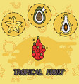 tropical fruit flat concept icons vector image