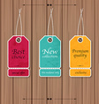 Collection of Sale Discount Vintage Banners on a vector image