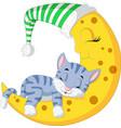 the cat sleep on the moon vector image