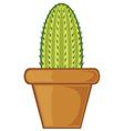 cactus in a pot vector image vector image