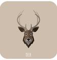 Animal Portrait With Flat Design Deer vector image