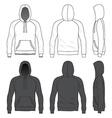 Raglan hoodie vector image