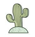 saguaro cactus icon vector image