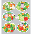 Vegetables sticker vector image