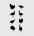 Silhouettes of Turkeys vector image