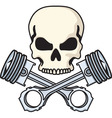 skull and pistons vector image