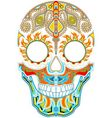 Day of the dead Mexican festival vector image