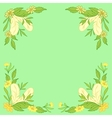 leaves and feathers vector image