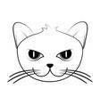 cat face cartoon icon image vector image