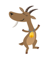 dancing goat with gold bell on white background vector image