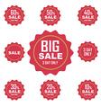 big sale label or tag vector image vector image