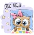 Cute Cartoon Sleeping Owl vector image vector image