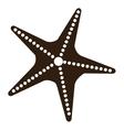 black and white starfish graphic vector image