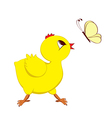 Abstract image of chick with butterfly vector image