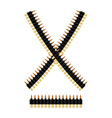 Bandolier with bullets Ammunition belt Tape vector image