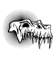 Skull of danger beast with huge fangs vector image vector image
