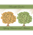 Spring and autumn detailed trees vector image vector image