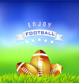 Enjoy Football American Time Background vector image