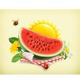 Summer time for a picnic watermelon nature outdoor vector image