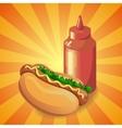 ketchup and hot dog vector image