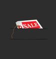 sale card in pocket vector image