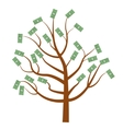 Tree with money Dollars Flat design isolated vector image
