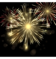 abstract Holiday Fireworks Background for vector image