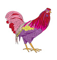 fantasy rooster vector image