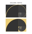 Business Card Template Golden Ratio Divine vector image vector image