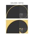 Business Card Template Golden Ratio Divine vector image