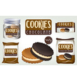 Chocolate cookies in different packages vector image