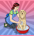 pop art happy woman washing their dog vector image vector image