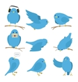 Blue birds set vector image