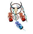 Skull Dreamcatcher vector image