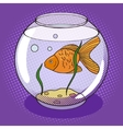 Goldfish in fishbowl pop art style vector image