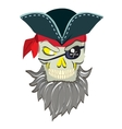 Danger pirate skull in bandane vector image