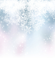 Blue Winter Backdrop vector image vector image
