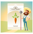Pack of carrot seeds icon vector image