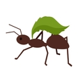 Brown Ant with Green Leaf vector image