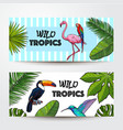 banners with exotic tropical birds palm leaves vector image vector image