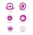 Spa logo icon set vector image