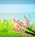 spring bg vector image