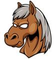 Head Horse vector image