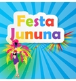 Festa Junina Background vector image