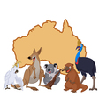 Australia with animals vector image