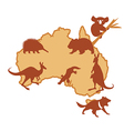 Australia with silhouettes of animals vector image