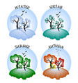 four seasons winter spring summer autumn vector image