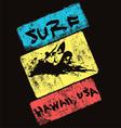 surf hawaii usa vector image