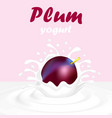 a splash of yogurt from a falling plum and a drop vector image